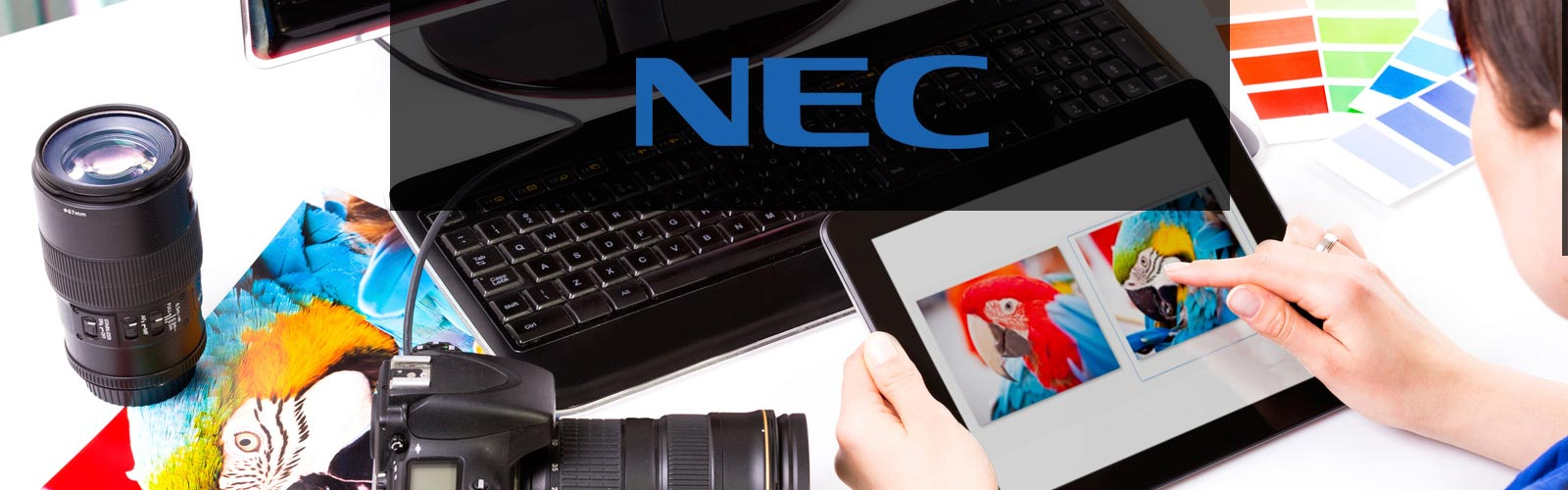 about_us_nec