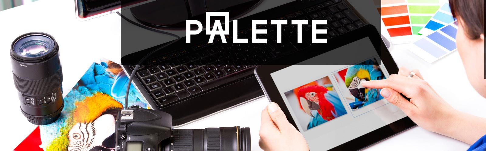 about_us_palette