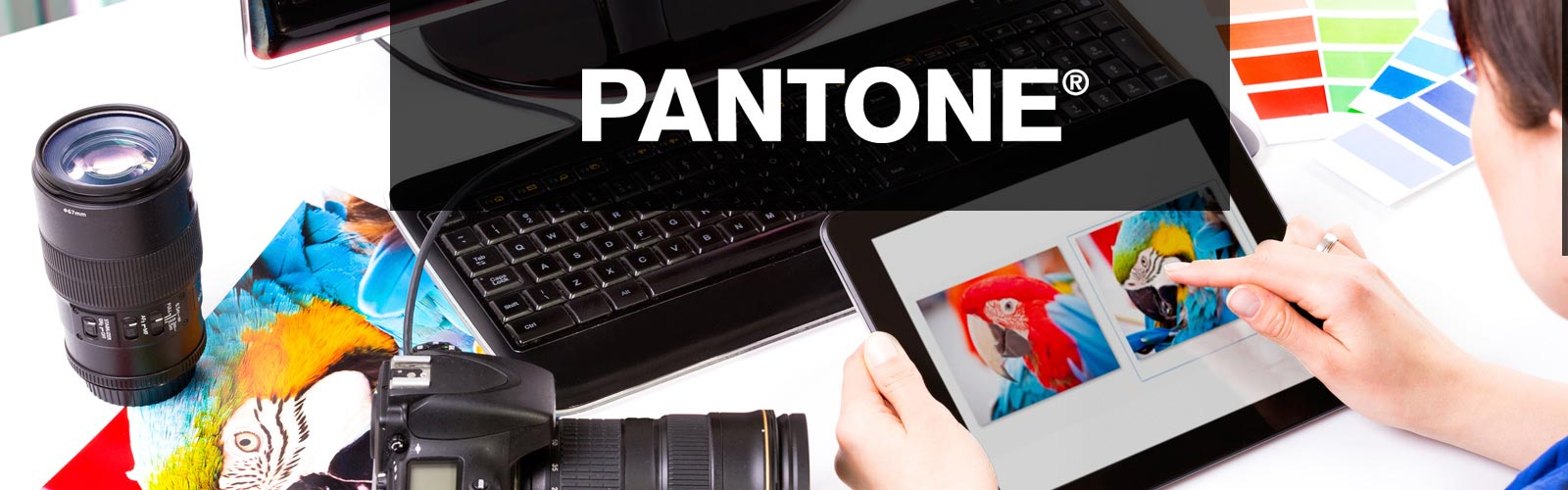 about_us_pantone