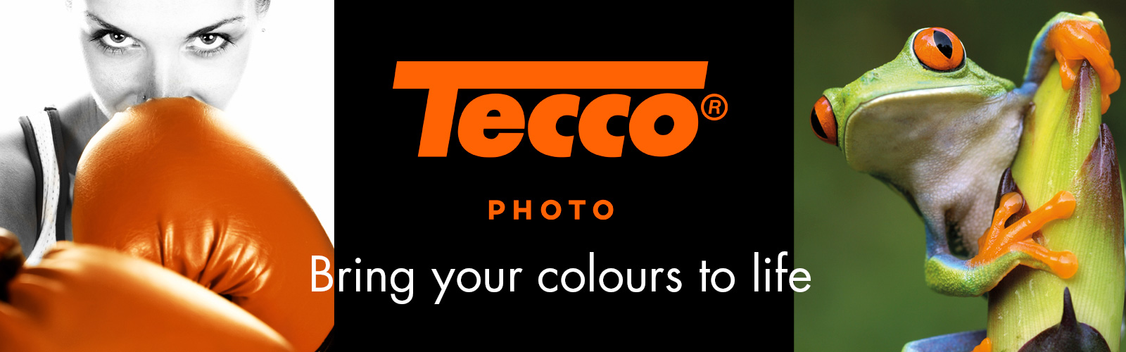 Tecco - bring your colours to life